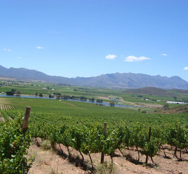 team building winelands