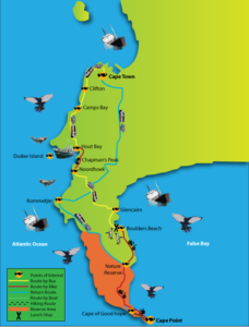 Cape Point & Peninsula Day Tour with E Bikes & Hiking
